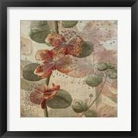 Desert Botanicals I Framed Print