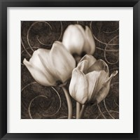 Framed Tulip & Swirls I