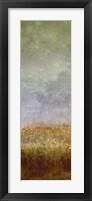 Lush Field II Framed Print