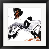Butterfly Inflorescence III Framed Print