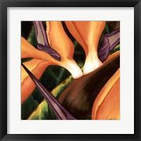 Framed Bird Of Paradise Tile II