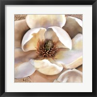 Framed Magnolia Masterpiece II
