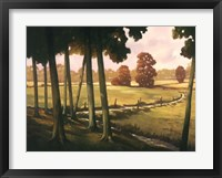 Framed Morning Light I