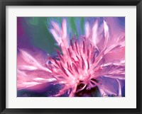 Framed Painterly Flower VIII