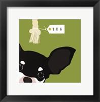 Peek-A-Boo Chihuahua Framed Print