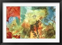 Framed Midday Bloom II