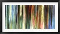 Framed Midas Falls