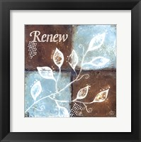 Framed Renew
