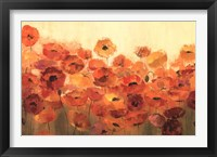 Framed Summer Poppies