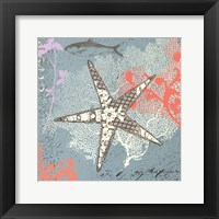Framed Starfish on Aqua