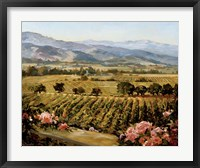 Framed Vineyards to Vaca Mountains