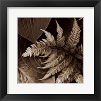 Framed Painted Ferns II
