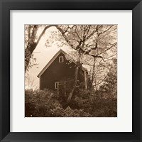 Framed Bough and Barn