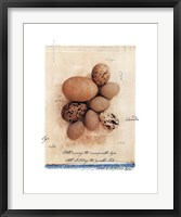 Eggs Framed Print