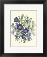 Framed Florals I