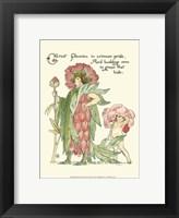 Framed Shakespeare's Garden V (Peony)
