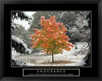 Framed Endurance - Fall Tree