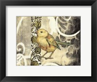 Bird Song II Framed Print