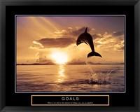 Framed Goals - Dolphins