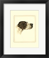 Framed Pointer