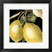 Dramatic Lemon Framed Print
