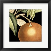 Dramatic Orange Framed Print