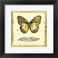 Butterfly and Wildflowers II Framed Print