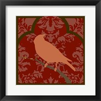 Moroccan Songbird II Framed Print