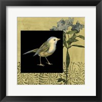 Bird Fantasy I Framed Print