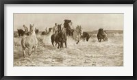 Framed Horses Bathing