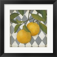 Framed Fruit and Pattern IV