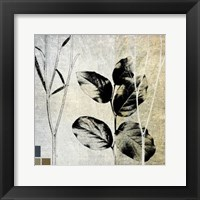Framed Leaves & Stems I