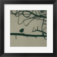 Framed Caligraphy Bird II