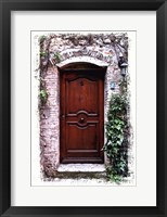 Doors of Europe II Framed Print