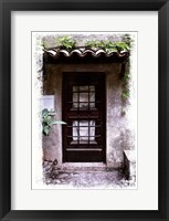Doors of Europe XVI Framed Print