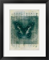 Framed Butterfly Calligraphy I