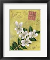 Framed Postage VI