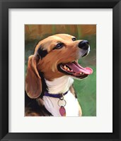 Framed Beagle-Beagle
