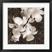 Framed Orchid & Swirls I