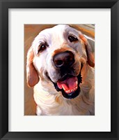 Framed Yellow Dog Smile