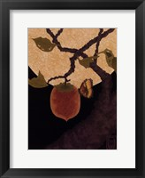 Framed Moon, Persimmon and Moth