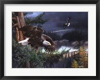 Framed Wings of Freedom