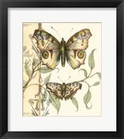 Tandem Butterflies I Framed Print