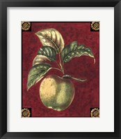 Framed Pomme De Hubbardston