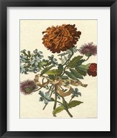Framed Floral Posy III