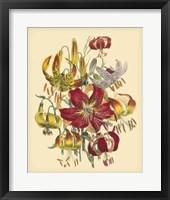 Framed Garden Bouquet III