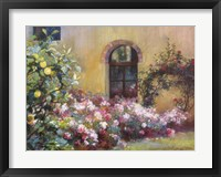 Tuscan Lemons And Pink Framed Print