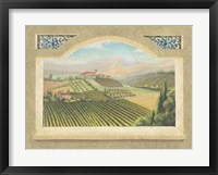 Vineyard Window IV Framed Print