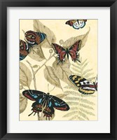 Graphic Butterflies in Nature II Framed Print