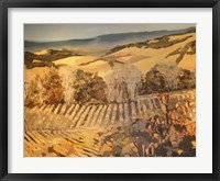 Autumn Vineyard Framed Print
